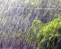 Святая Музыка Дождя
